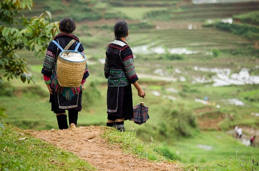 Traditional Hmong Textiles-Buying Guide